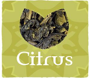 CITRUS-WEB