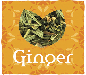 GINGER-WEB